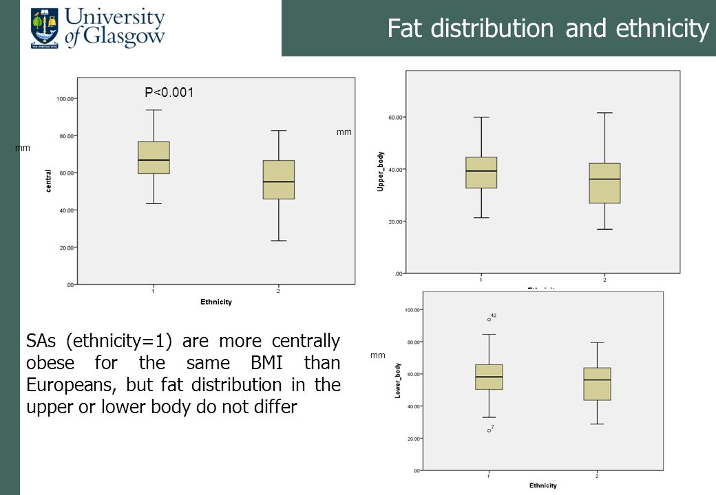 Fat distribution and ethnicity SAs (ethnicity=1) are more centrally obese for the same BMI than Europeans, but fat distribution in the upper or lower body do not differ P<0.001 mm