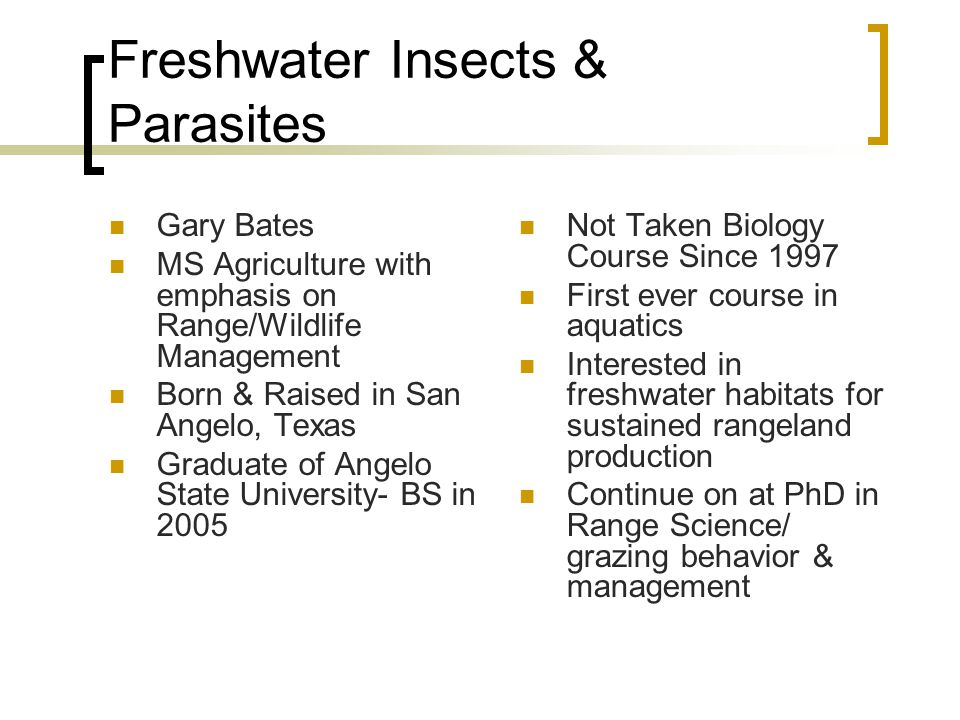 Freshwater Insects & Parasites Gary Bates MS Agriculture with emphasis on Range/Wildlife Management Born & Raised in San Angelo, Texas Graduate of Ang