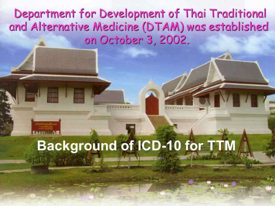 TTM Services Profile Medical Practice Midwifery Mother & child care Massage Meditation & rites Pharmacy practice