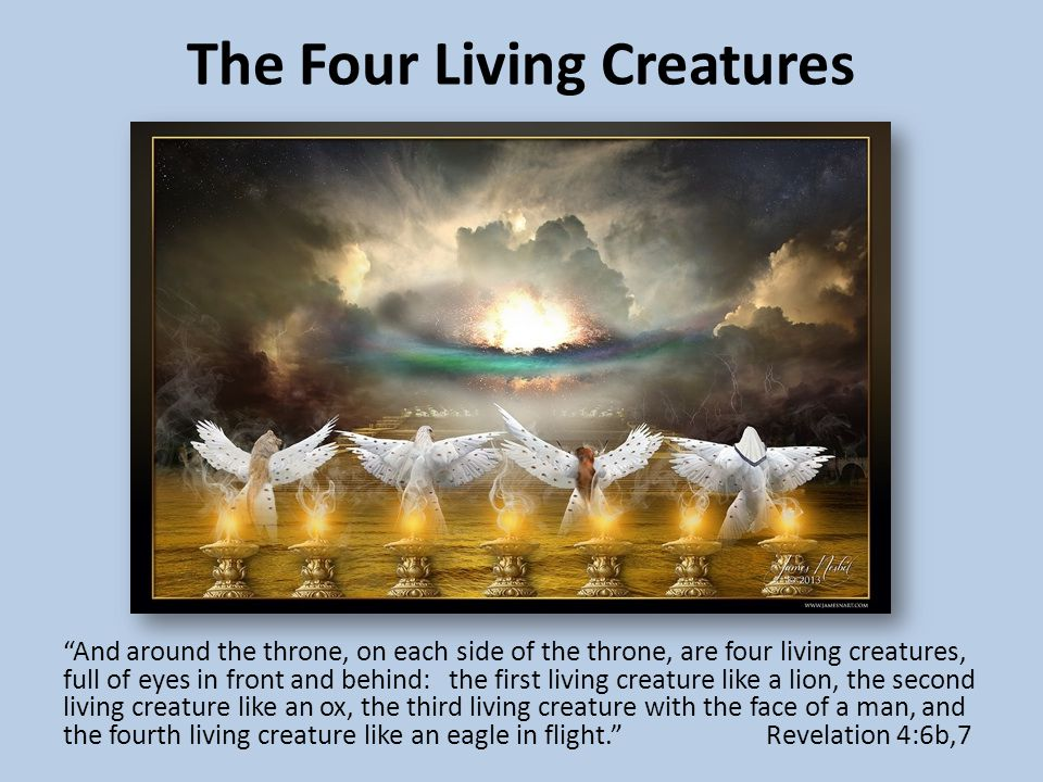 The Four Living Creatures And around the throne, on each side of the throne, are four living creatures, full of eyes in front and behind: the first living creature like a lion, the second living creature like an ox, the third living creature with the face of a man, and the fourth living creature like an eagle in flight. Revelation 4:6b,7