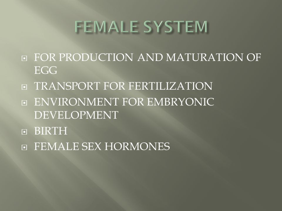  FOR PRODUCTION AND MATURATION OF EGG  TRANSPORT FOR FERTILIZATION  ENVIRONMENT FOR EMBRYONIC DEVELOPMENT  BIRTH  FEMALE SEX HORMONES