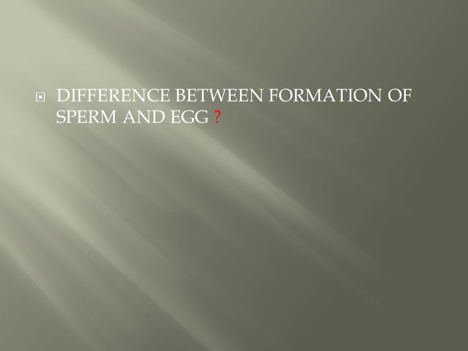  DIFFERENCE BETWEEN FORMATION OF SPERM AND EGG ?