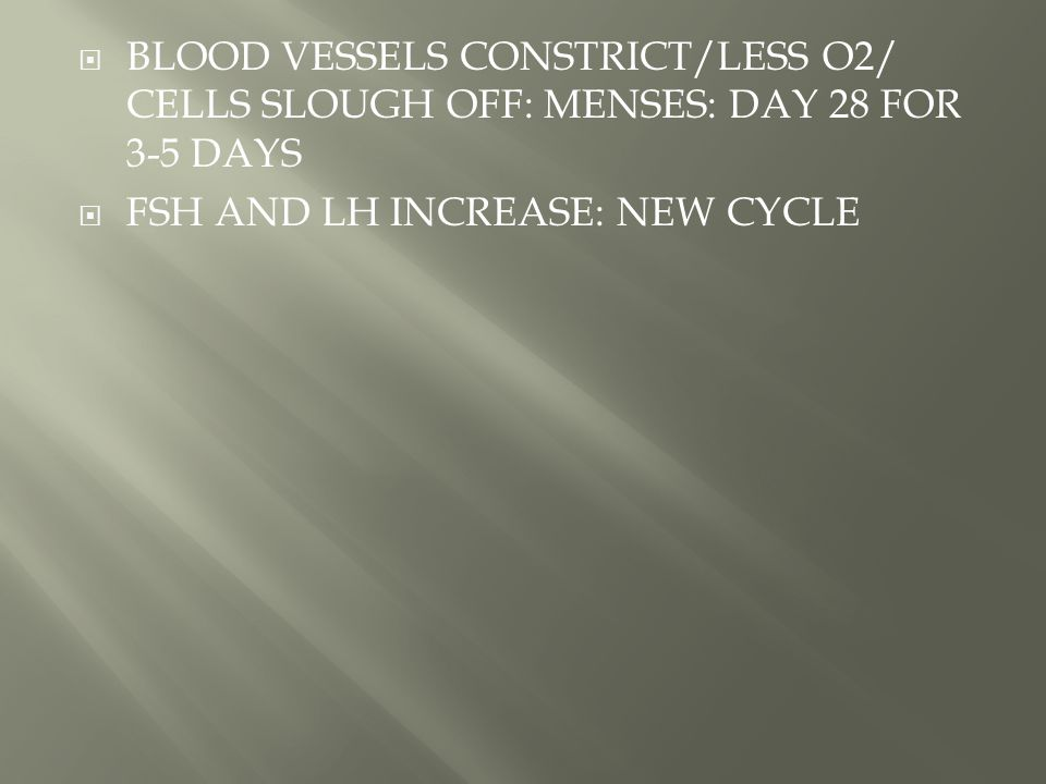  BLOOD VESSELS CONSTRICT/LESS O2/ CELLS SLOUGH OFF: MENSES: DAY 28 FOR 3-5 DAYS  FSH AND LH INCREASE: NEW CYCLE