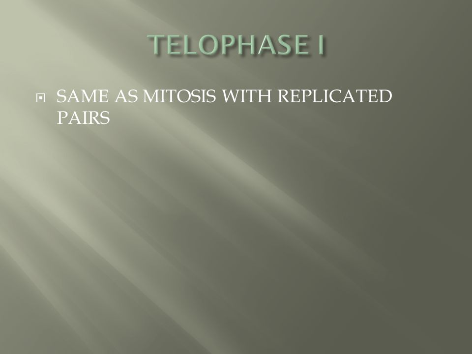  SAME AS MITOSIS WITH REPLICATED PAIRS