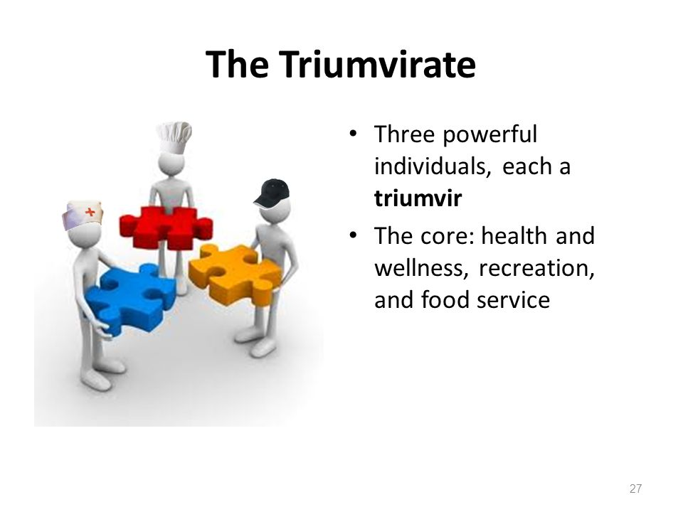 The Triumvirate Three powerful individuals, each a triumvir The core: health and wellness, recreation, and food service 27