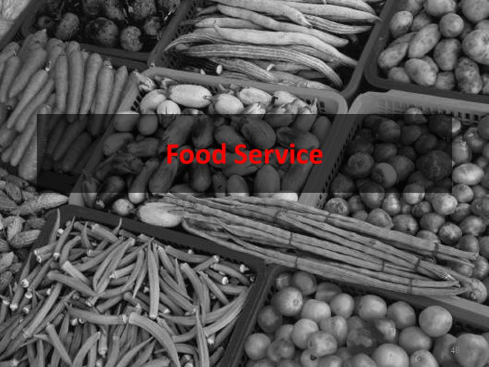 Food Service 48