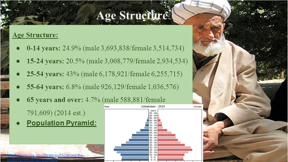 Age Structure Age Structure: ● 0-14 years: 24.9% (male 3,693,838/female 3,514,734) ● 15-24 years: 20.5% (male 3,008,779/female 2,934,534) ● 25-54 year