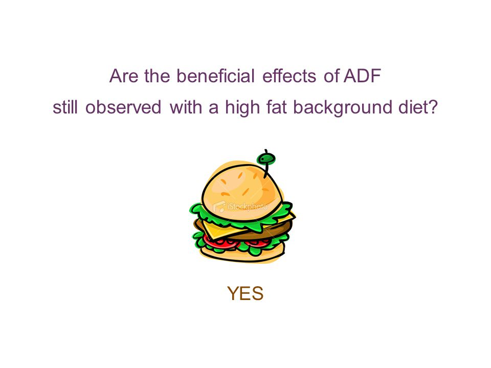 Are the beneficial effects of ADF still observed with a high fat background diet YES