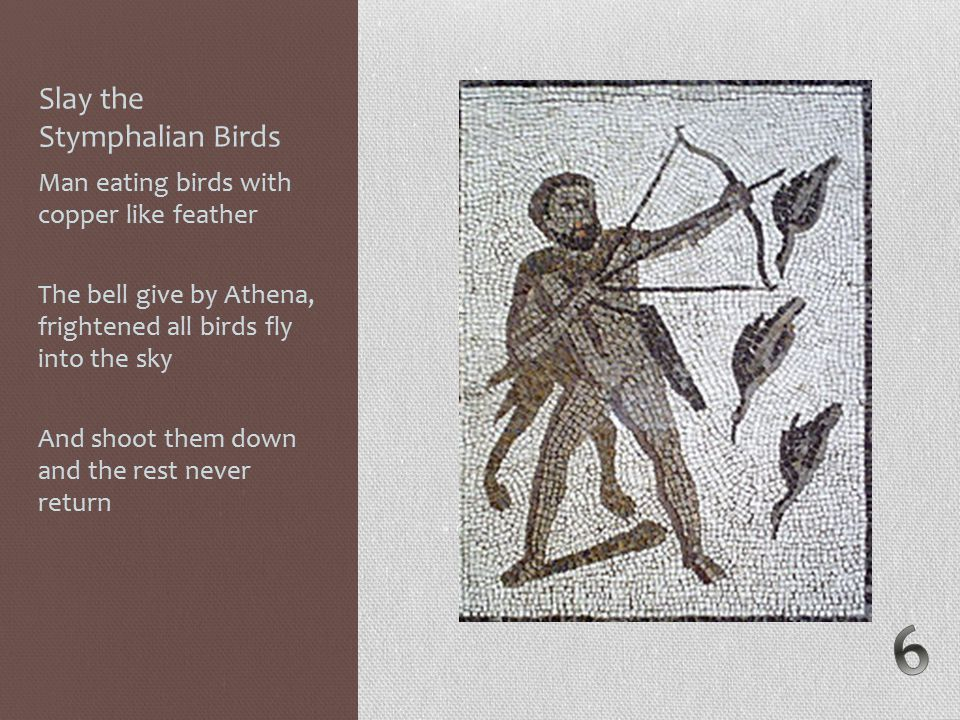 Slay the Stymphalian Birds Man eating birds with copper like feather The bell give by Athena, frightened all birds fly into the sky And shoot them dow