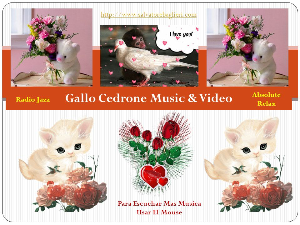 Gallo Cedrone Music & Video http://www.salvatorebaglieri.com Para Escuchar Mas Musica Usar El Mouse Radio Jazz Absolute Relax