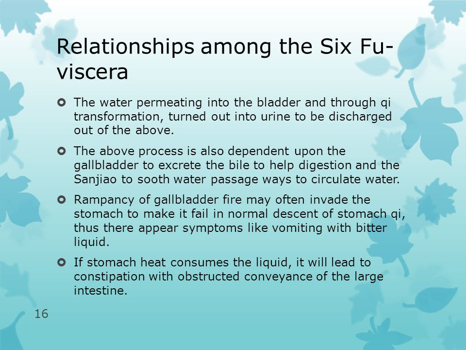 Relationships among the Six Fu- viscera  The water permeating into the bladder and through qi transformation, turned out into urine to be discharged out of the above.