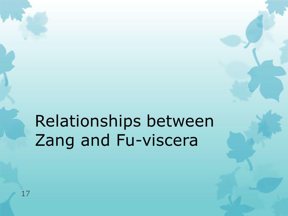 Relationships between Zang and Fu-viscera 17