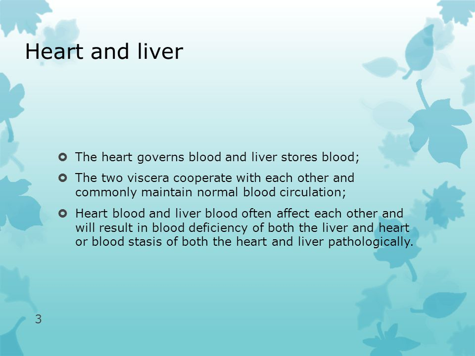 Heart and liver  The heart governs blood and liver stores blood;  The two viscera cooperate with each other and commonly maintain normal blood circulation;  Heart blood and liver blood often affect each other and will result in blood deficiency of both the liver and heart or blood stasis of both the heart and liver pathologically.