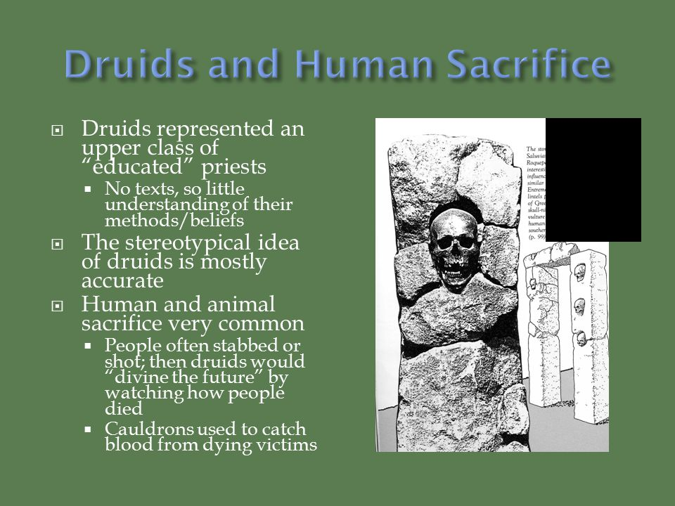  Druids represented an upper class of educated priests  No texts, so little understanding of their methods/beliefs  The stereotypical idea of druids is mostly accurate  Human and animal sacrifice very common  People often stabbed or shot; then druids would divine the future by watching how people died  Cauldrons used to catch blood from dying victims