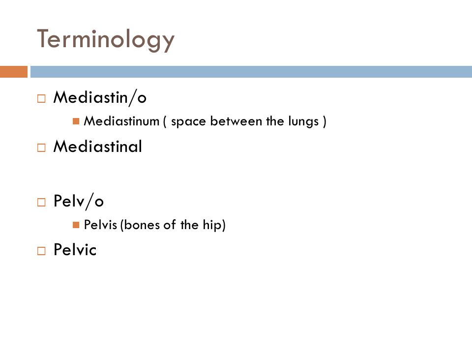 Terminology  Mediastin/o Mediastinum ( space between the lungs )  Mediastinal  Pelv/o Pelvis (bones of the hip)  Pelvic