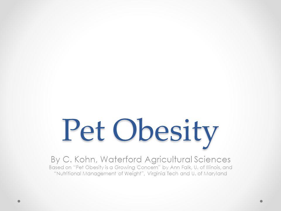 Pet Obesity By C.