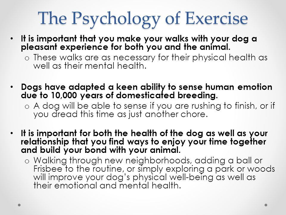 The Psychology of Exercise It is important that you make your walks with your dog a pleasant experience for both you and the animal.