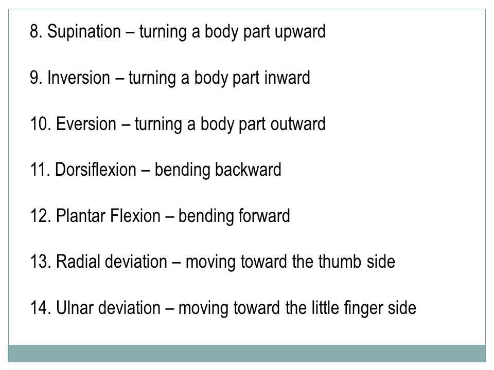 8. Supination – turning a body part upward 9. Inversion – turning a body part inward 10. Eversion – turning a body part outward 11. Dorsiflexion – ben