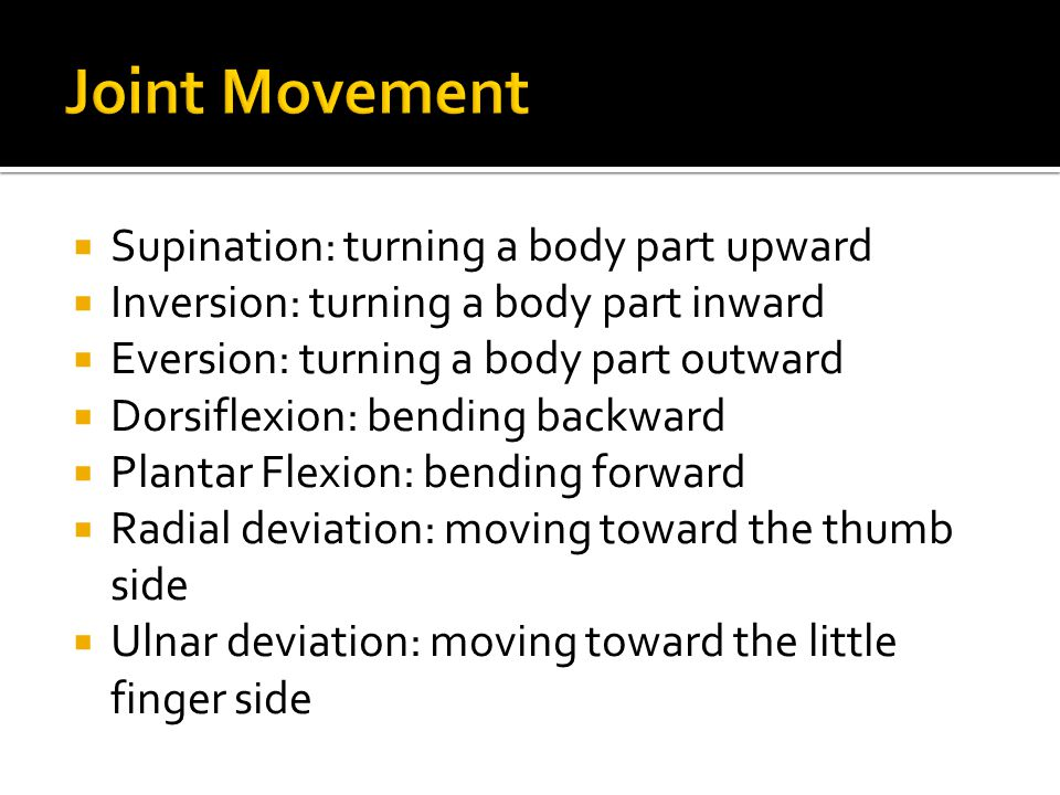  Supination: turning a body part upward  Inversion: turning a body part inward  Eversion: turning a body part outward  Dorsiflexion: bending backw