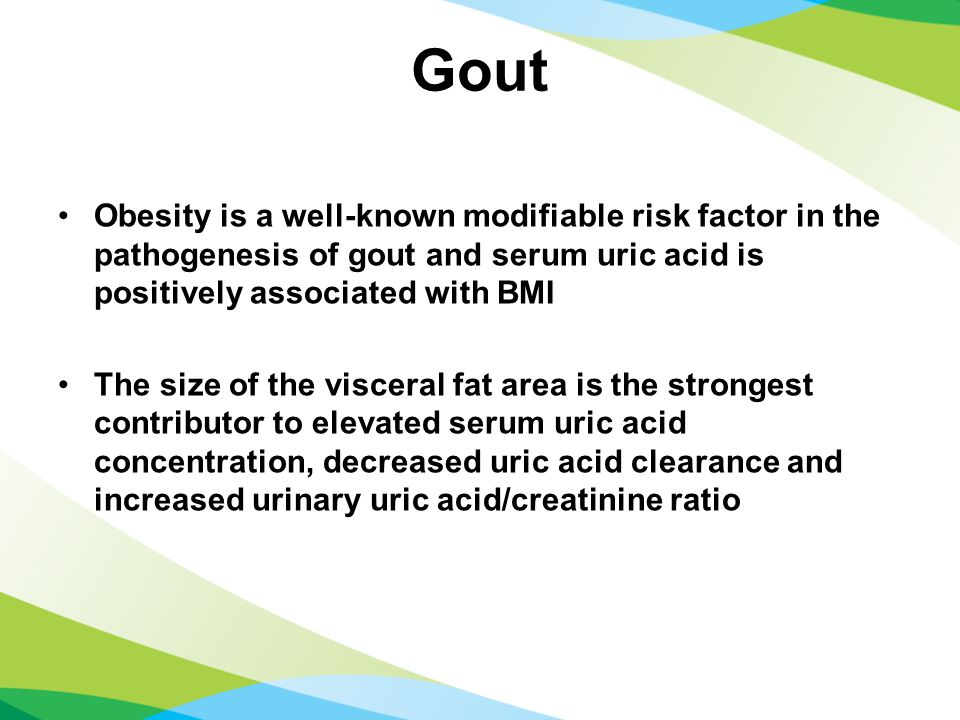 Gout Obesity is a well-known modifiable risk factor in the pathogenesis of gout and serum uric acid is positively associated with BMI The size of the visceral fat area is the strongest contributor to elevated serum uric acid concentration, decreased uric acid clearance and increased urinary uric acid/creatinine ratio