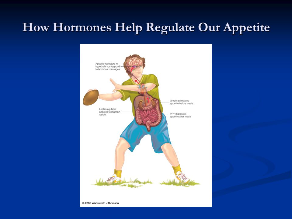 How Hormones Help Regulate Our Appetite