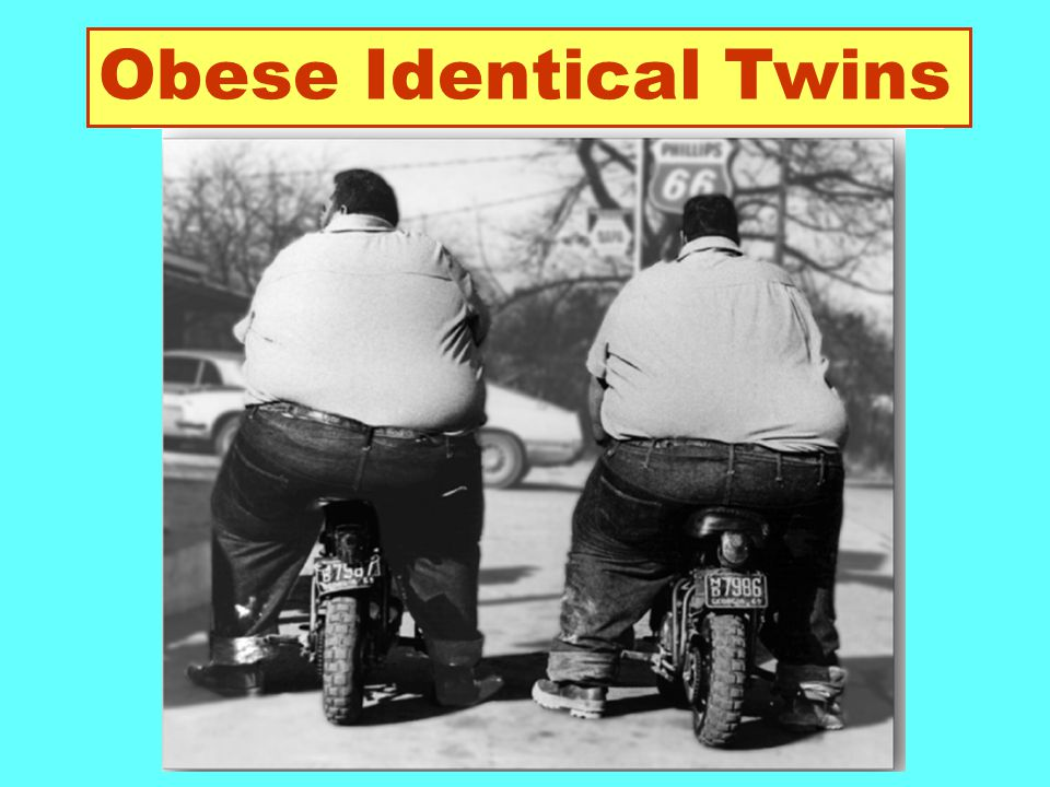 Obese Identical Twins