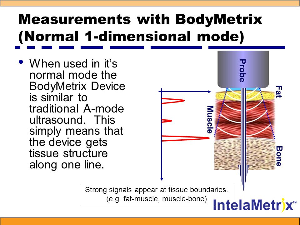 Measurements with BodyMetrix (Normal 1-dimensional mode) When used in it's normal mode the BodyMetrix Device is similar to traditional A-mode ultrasound.