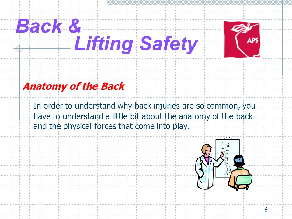 6 Back & Lifting Safety Anatomy of the Back In order to understand why back injuries are so common, you have to understand a little bit about the anatomy of the back and the physical forces that come into play.