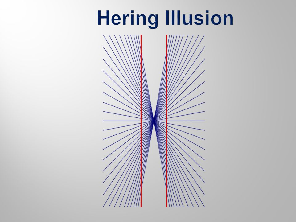 Hering illusion – Previous Slide The Hering illusion is an optical illusion discovered by the German physiologist Ewald Hering in 1861.
