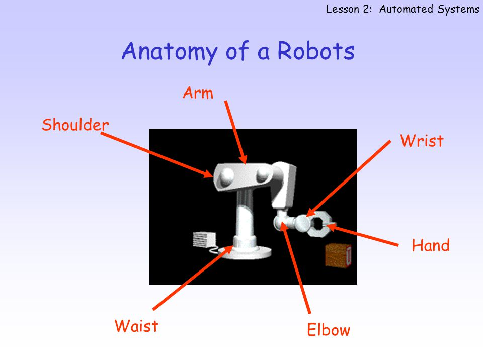 Anatomy of a Robots Lesson 2: Automated Systems Waist Arm Wrist Elbow Hand Shoulder