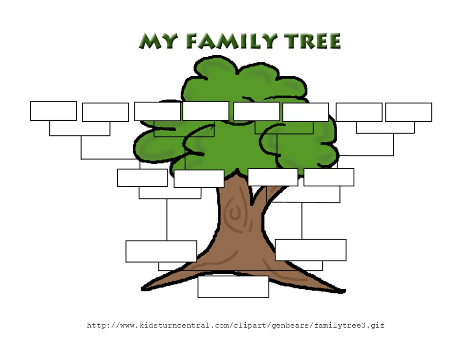 http://www.kidsturncentral.com/clipart/genbears/familytree3.gif