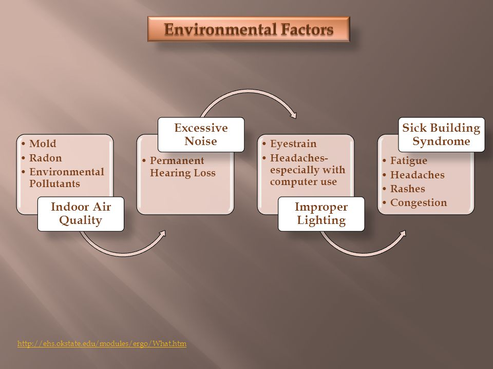 Mold Radon Environmental Pollutants Indoor Air Quality Permanent Hearing Loss Excessive Noise Eyestrain Headaches- especially with computer use Improper Lighting Fatigue Headaches Rashes Congestion Sick Building Syndrome http://ehs.okstate.edu/modules/ergo/What.htm