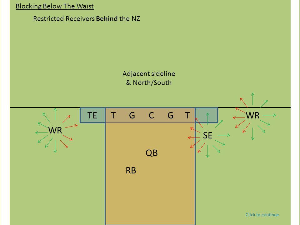 TE T G C G T QB WRSE WR RB Blocking Below The Waist Restricted Receivers Beyond the NZ Adjacent sideline.