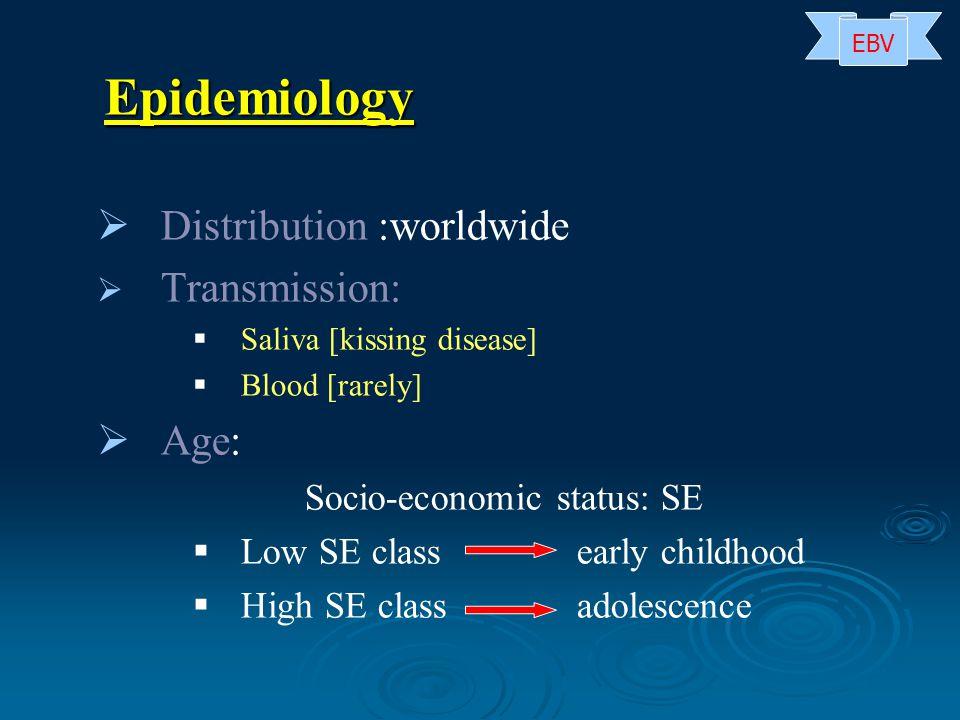   Distribution :worldwide   Transmission:   Saliva [kissing disease]   Blood [rarely]   Age: Socio-economic status: SE   Low SE class early childhood   High SE classadolescence Epidemiology EBV