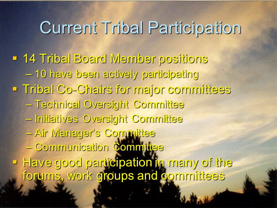 Tribal Issues: Wood Burning  Before Tribal participation, there was talk of regional bans on residential wood burning –Tribes reeducated the state/federal partner Mescalero Apache Tribe Traditional and ceremonial burning exempted from regulation due to tribal participation