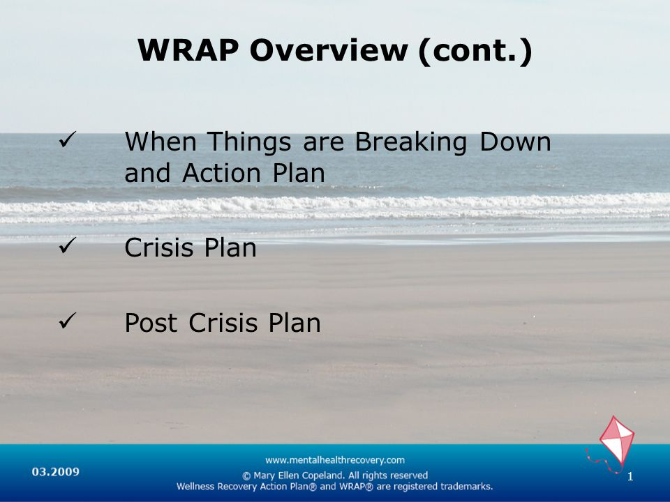WRAP Overview (cont.) When Things are Breaking Down and Action Plan Crisis Plan Post Crisis Plan 1
