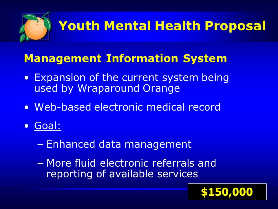 Management Information System Expansion of the current system being used by Wraparound Orange Web-based electronic medical record Goal: – Enhanced data management – More fluid electronic referrals and reporting of available services $150,000 Youth Mental Health Proposal