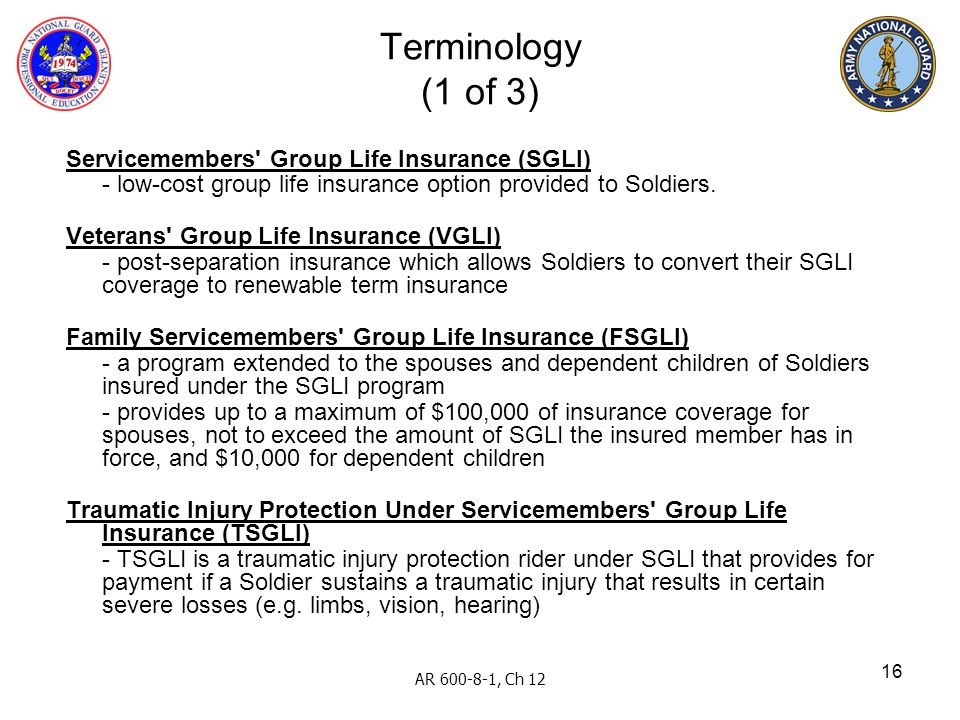 16 Servicemembers' Group Life Insurance (SGLI) - low-cost group life insurance option provided to Soldiers. Veterans' Group Life Insurance (VGLI) - po