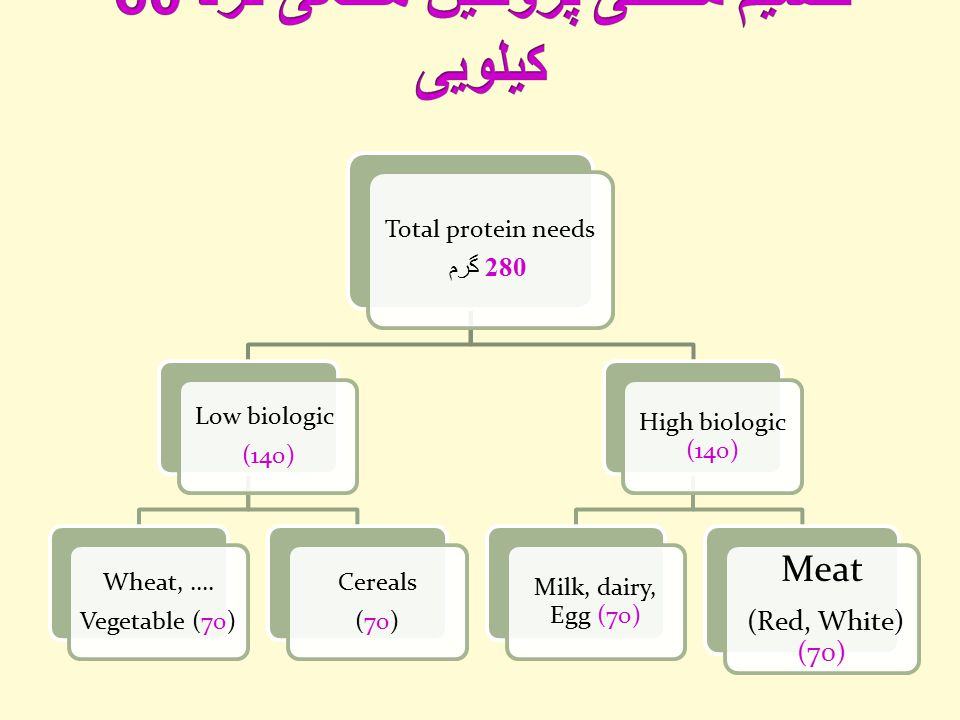 Total protein needs 280 گرم Low biologic (140) Wheat, ….