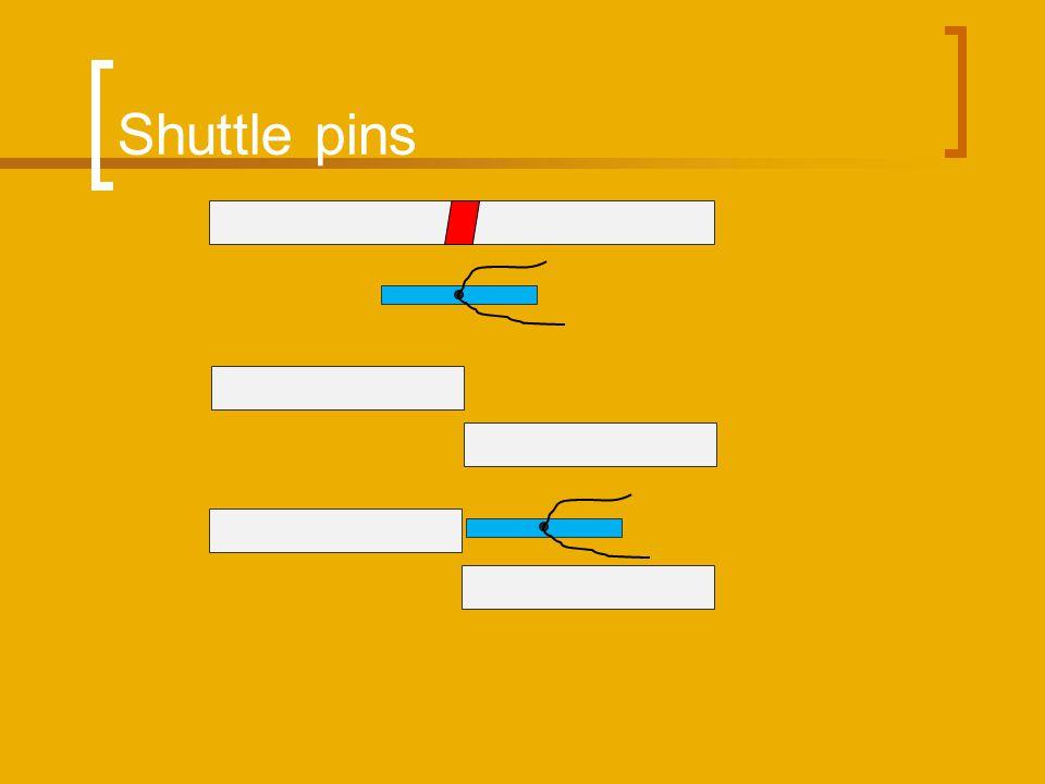 Shuttle pins