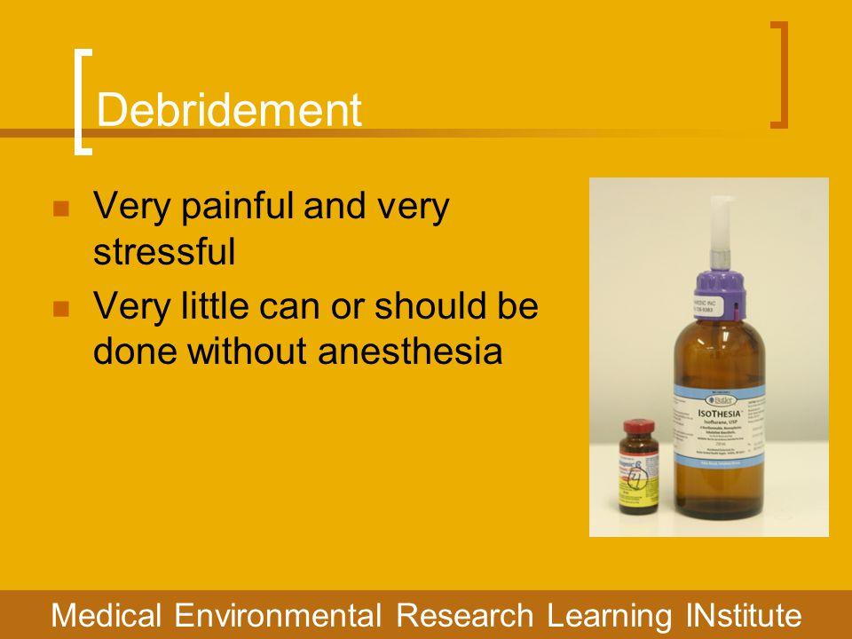 Debridement Very painful and very stressful Very little can or should be done without anesthesia Medical Environmental Research Learning INstitute