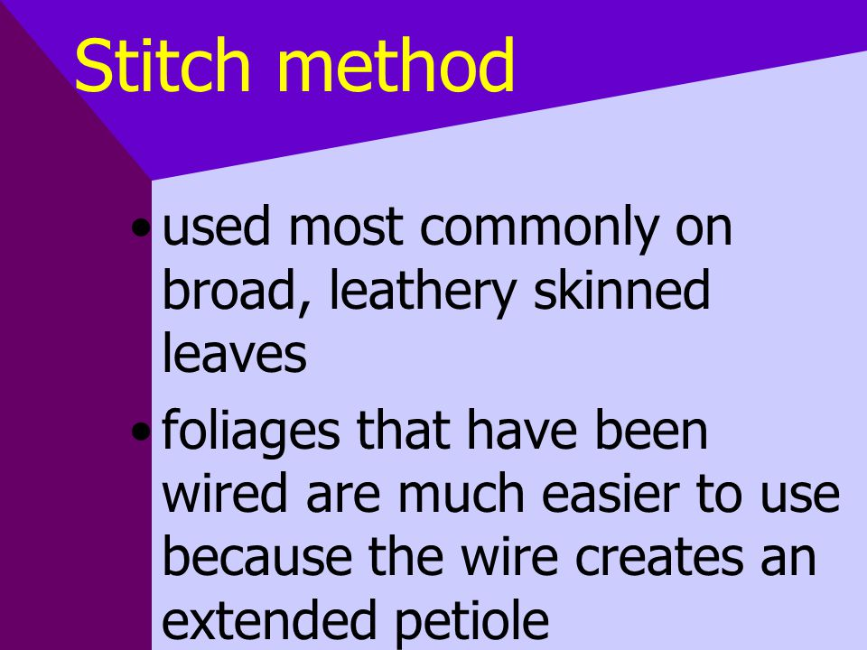 Stitch method used most commonly on broad, leathery skinned leaves foliages that have been wired are much easier to use because the wire creates an extended petiole