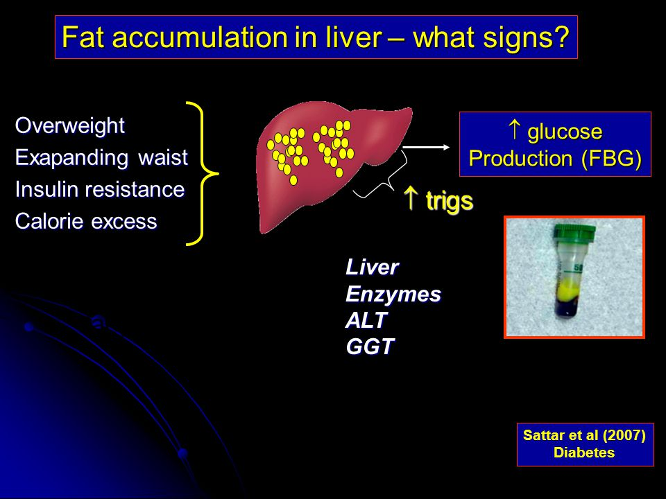  glucose Production (FBG) fat cells larger Fat accumulation in liver – what signs.