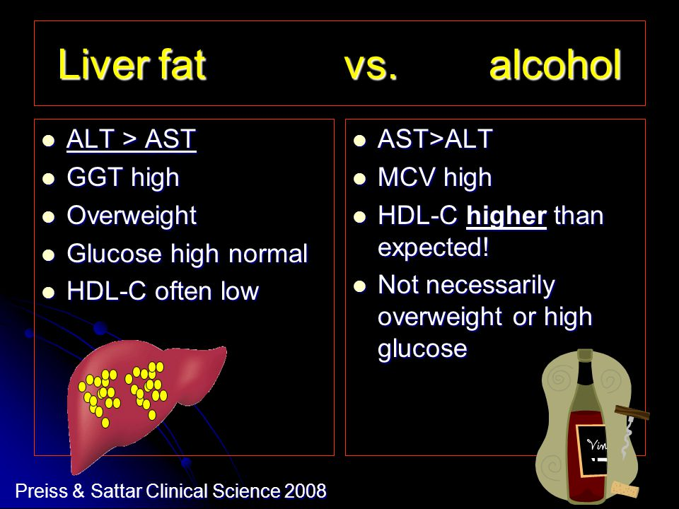 Liver fat vs.