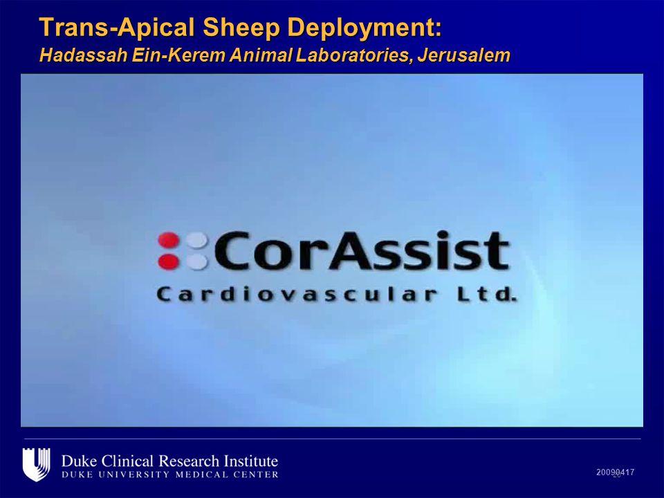 20090417 Trans-Apical Sheep Deployment: Hadassah Ein-Kerem Animal Laboratories, Jerusalem 20