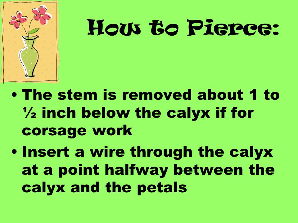 Piercing Method: Used on flowers that have an enlarged calyx…such as? Only use this method if the flower is going into a corsage or the stem will not
