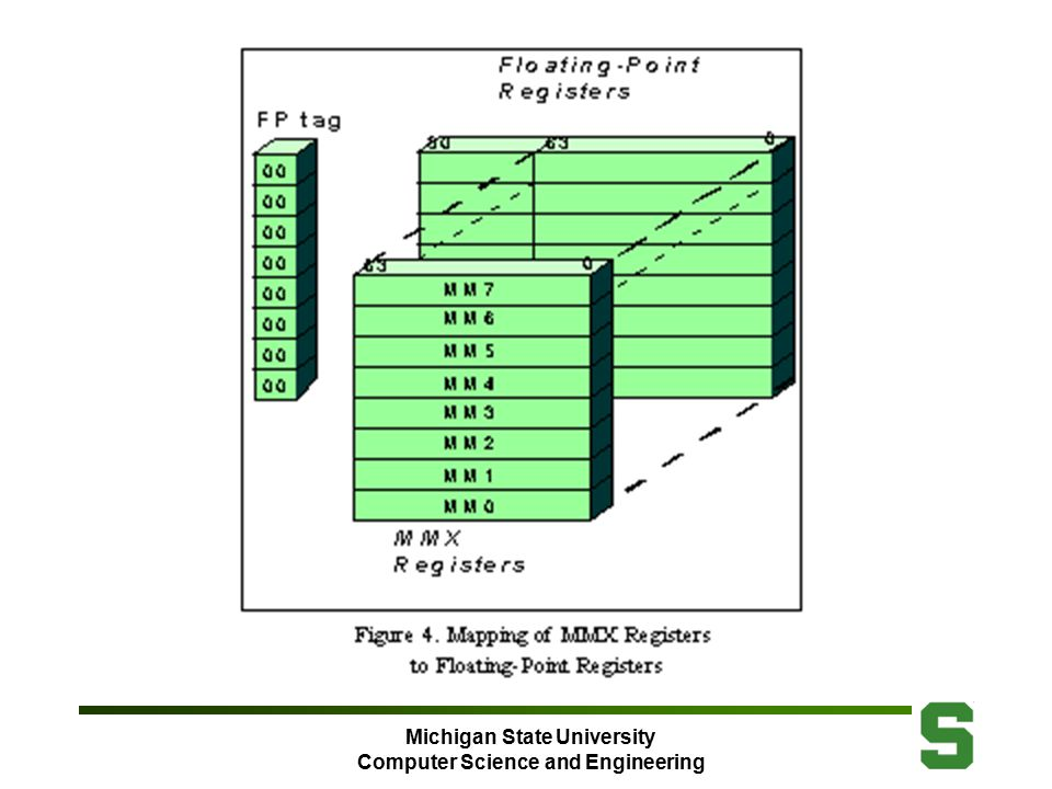 Michigan State University Computer Science and Engineering