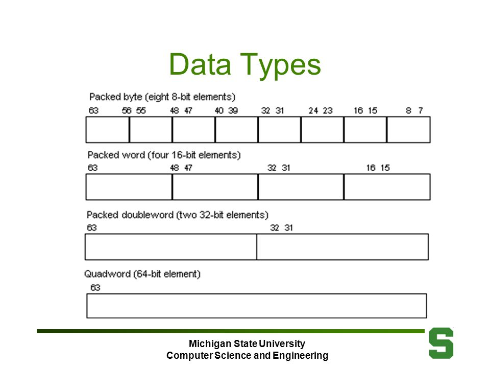 Michigan State University Computer Science and Engineering Data Types