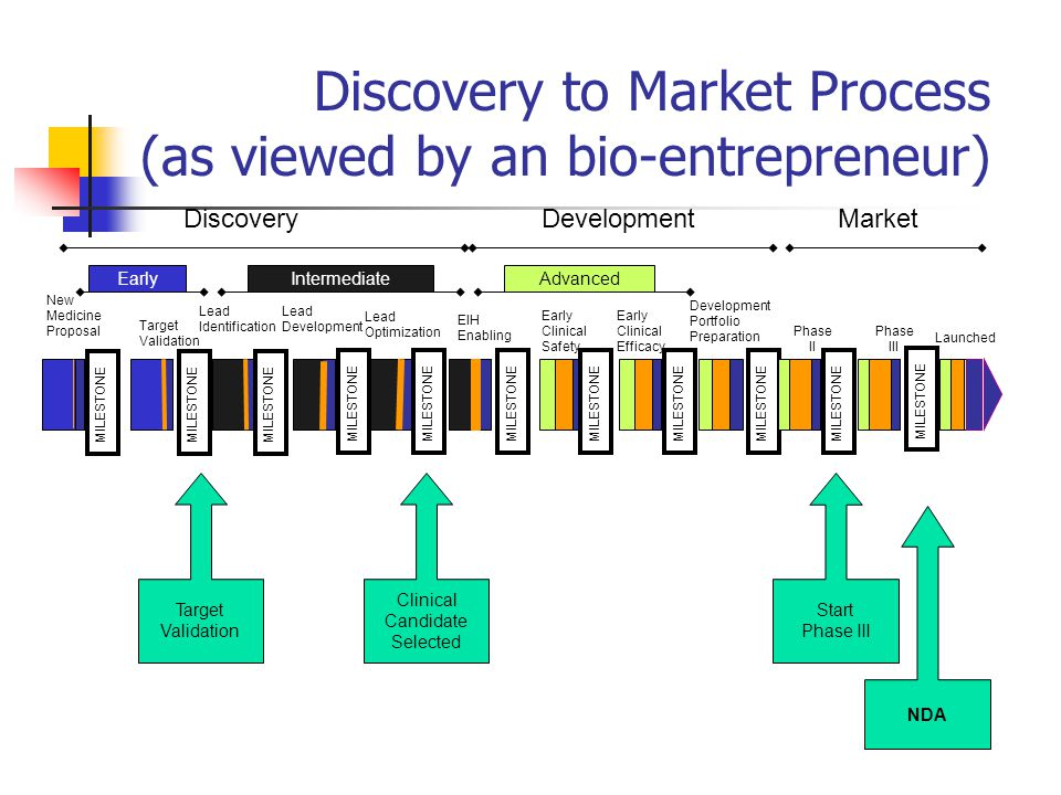Discovery to Market Process (as viewed by an bio-entrepreneur) AdvancedIntermediateEarly New Medicine Proposal Target Validation Lead Identification Lead Development Lead Optimization EIH Enabling Early Clinical Safety Development Portfolio Preparation Early Clinical Efficacy Phase II Phase III Launched MILESTONE Target Validation Clinical Candidate Selected Start Phase III NDA DiscoveryDevelopmentMarket MILESTONE