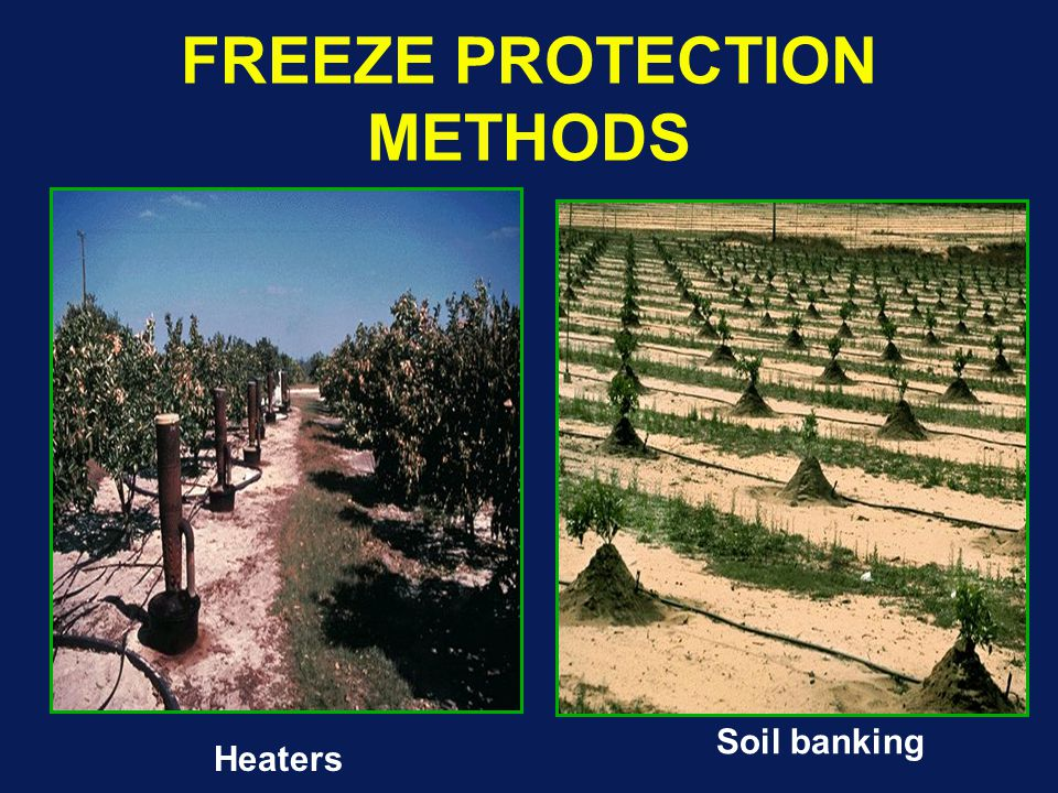FREEZE PROTECTION METHODS Heaters Soil banking